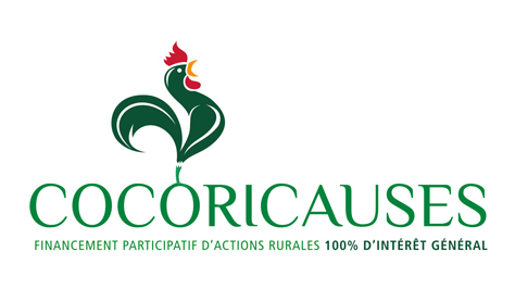 Cocoricauses